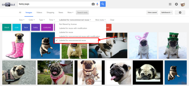 pugsgoogle2.png