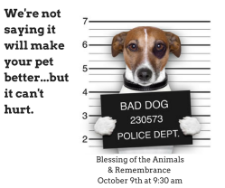 bad-dog-church-ad-fb-post-size-shared